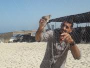 """حظرٌ لصيد """"السُمان"""" بغزة.. صيّاد: """"آخر همّي"""""""